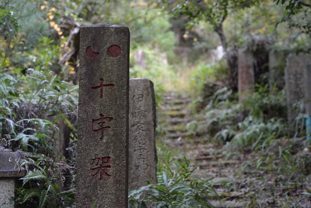 141109_IWASAKI_AS_17