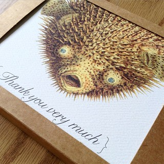 These Pufferfish thank you notes are headed up to New York in one of my new eco-friendlier cardboard boxes