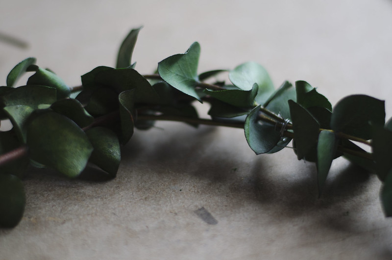 making eucalyptus wreaths on juliettelaura.blogspot.com