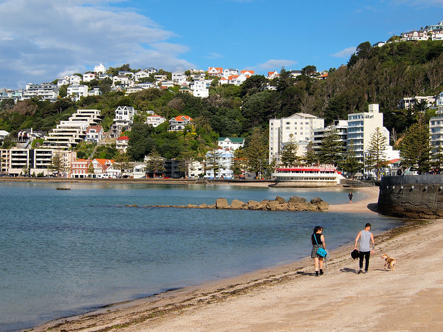 Oriental Bay in Wellington, NZ