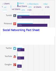 Social Networking Fact Sheet
