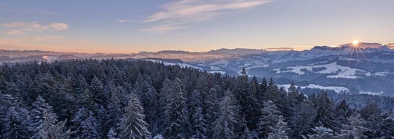 Sunrise at a cold winter morning - Chuderhüsi