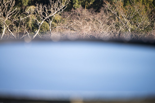 winter sun sunrise 日本 太陽 千葉県 日の出 陽 真昼 mineoka 鴨川市 嶺岡 冬の陽