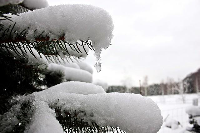 Winter-Wonder-Land Dez 2014_03