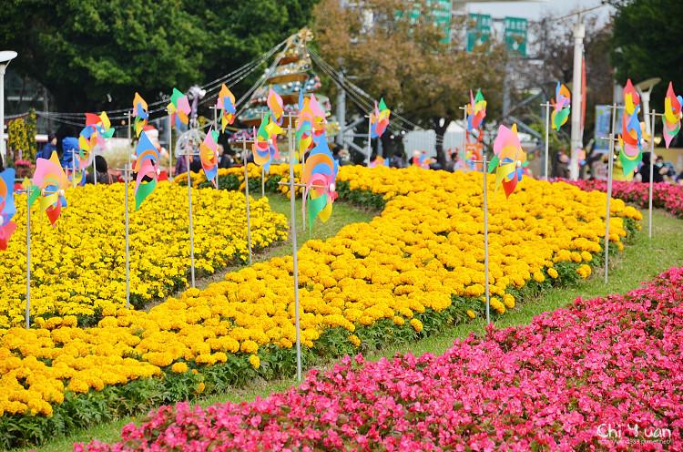 2014-2015台北花卉展21.jpg