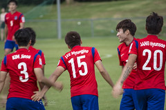 SOUTH KOREA 2015 AFC Asian Cup