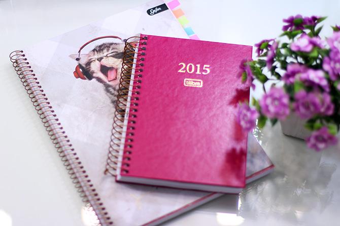 caderninho de organização 2015 sempre glamour