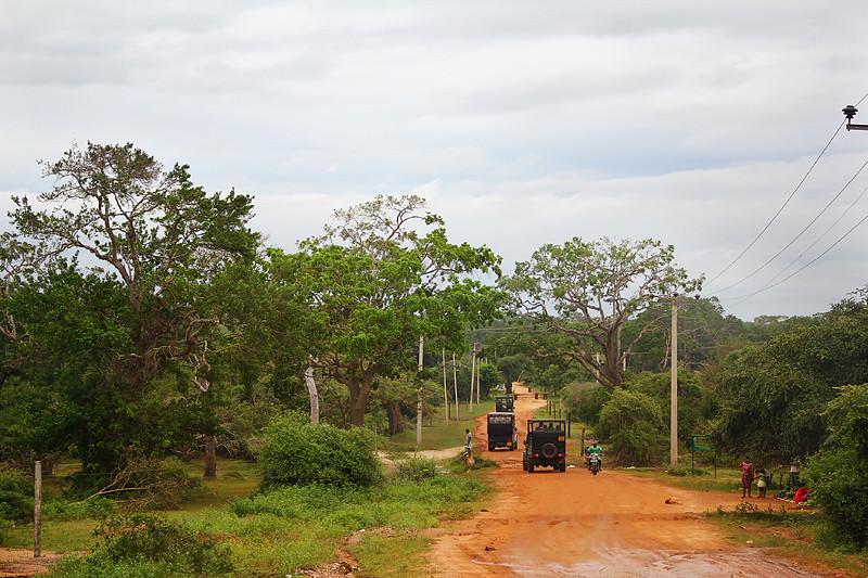 On the way to Yala National Park