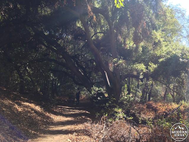Monrovia-Canyon-Park 12