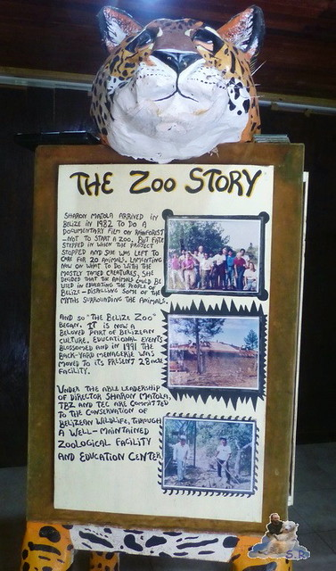 Belize Zoo 19.11.2014 22