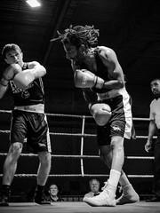Boxing B&W-set