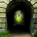 dark tunnel,but the liberty is coming out-.jpg