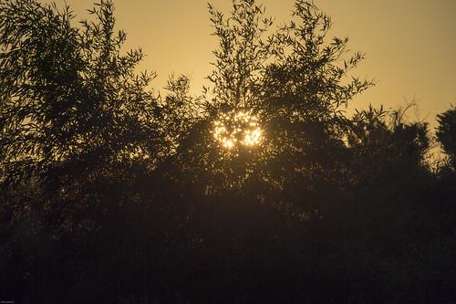 sunset sun moon japan 日本 太陽 千葉県 月 ジャパン 鴨川市 嶺岡
