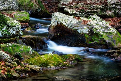 nature water creek landscape waterfall moss nikon rocks cottoncandy waterscape d810