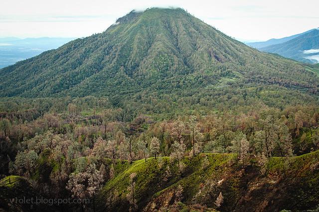 Ijen Crater Mt Meranti2-8973rw
