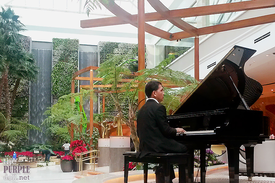 Pianist at Oasis Garden Cafe