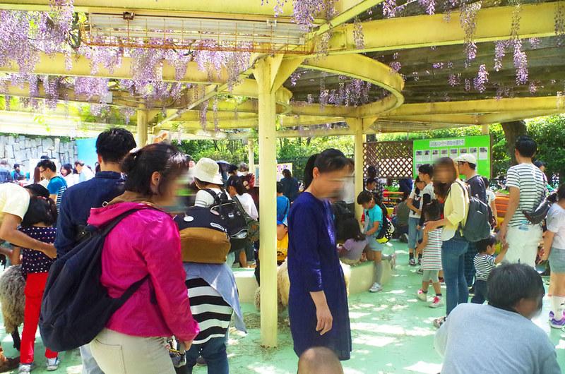 toomilog-edogawaku_zoo036