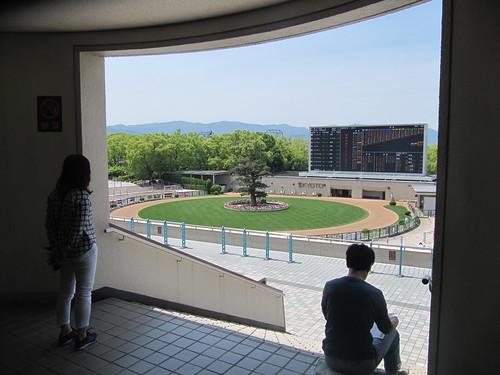 京都競馬場のパドックを眺める男女