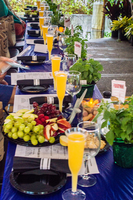 Unlimited Mimosa Brunch at the Delray Beach Wine & Seafood Festival Chefs Panel Event