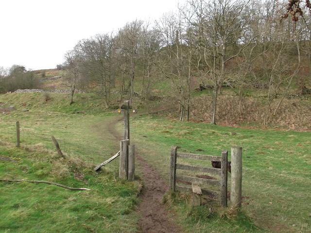 breidden hill 021