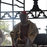 Cardinal Vincent leads Mass