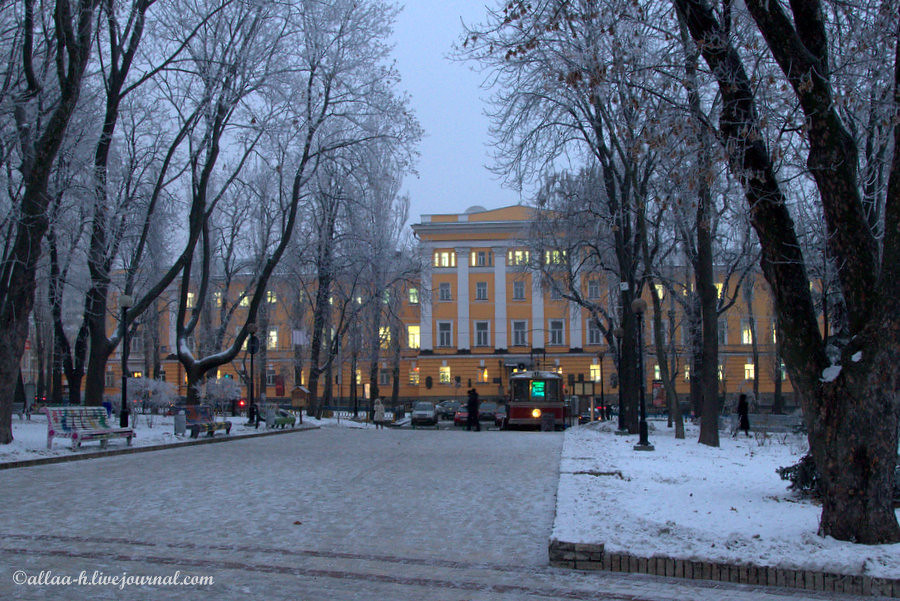 Winter evening in Shevchenko park