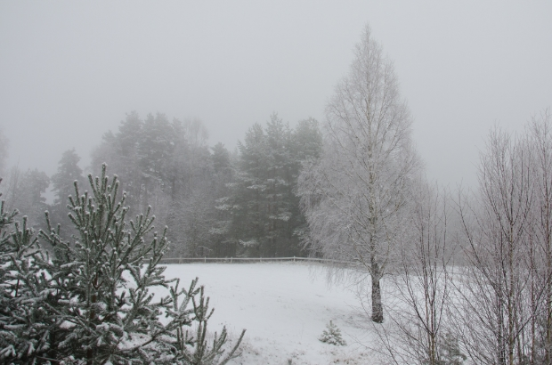 the December fog continues