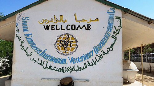 Livestock export quarantine center at Berbera port, Somaliland