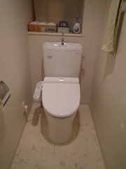 urinal(0.0), floor(1.0), toilet(1.0), room(1.0), plumbing fixture(1.0), toilet seat(1.0), bidet(1.0), bathroom(1.0),
