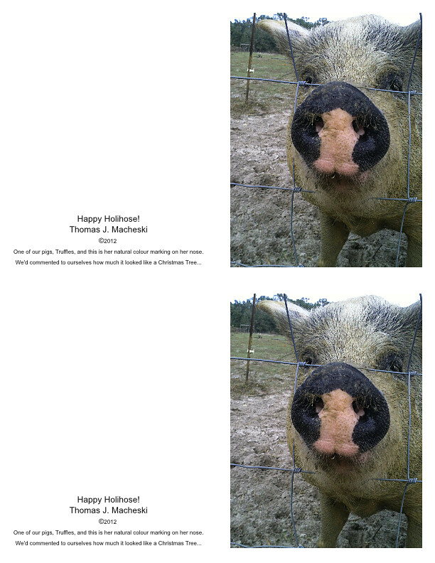 HappyHolinose_GreetingCard_QuarterFold_Portrait1_Mk2-page001