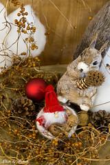 フィンランド共和国  「フィンランドの森で出会ったクリスマス」