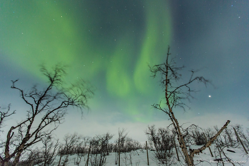 Auroras Boreales en Noruega-64