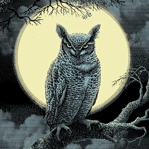 Tonight I watched breathless as the Full Wolf Moon in Cancer rose wreathed in haze over the sycamores. I had been drawn outside by the call of a Great Horned Owl, hooting in the treetops. It's a rare blessing to hear one here - as my street is more home t