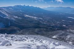 山肌の樹氷と八ヶ岳・南アルプス