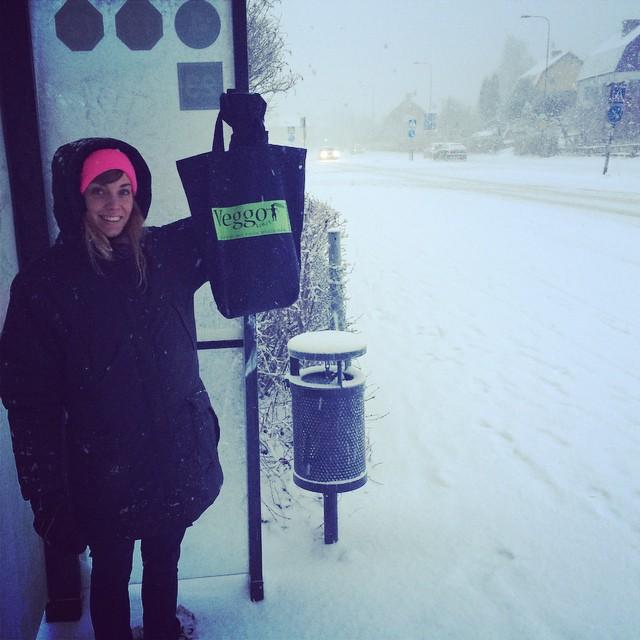 Åk till Västerås, ta buss 4 till Haga Parkgata och besök Veggoköket! Hennes korvar gör resan värd!