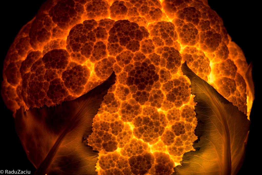 Apocalypse Now – der Blumenkohl