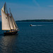 Sailing, Casco Bay, Portland ME