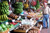 Inselwandern auf Madeira. Früchte der Insel auf dem Markt in Funchal. Foto: Günther Härter.