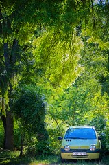 Green Car France - Photo of Ladiville
