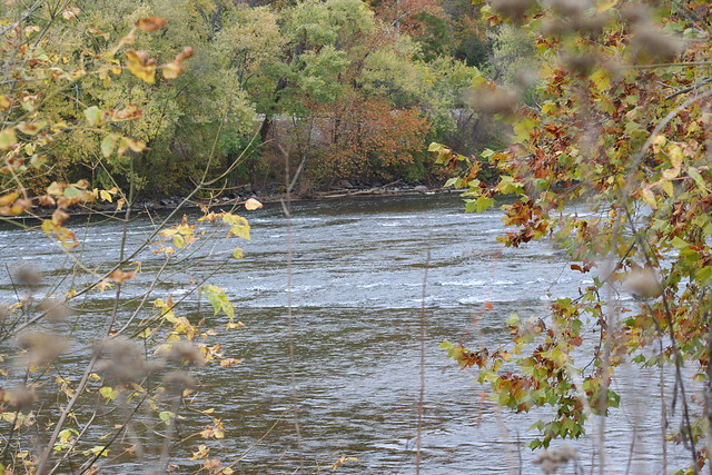 James River State Park Fall 2014 (163)