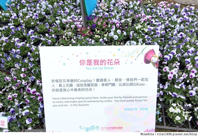 2014新社花海47