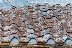 Aging Metal Roof