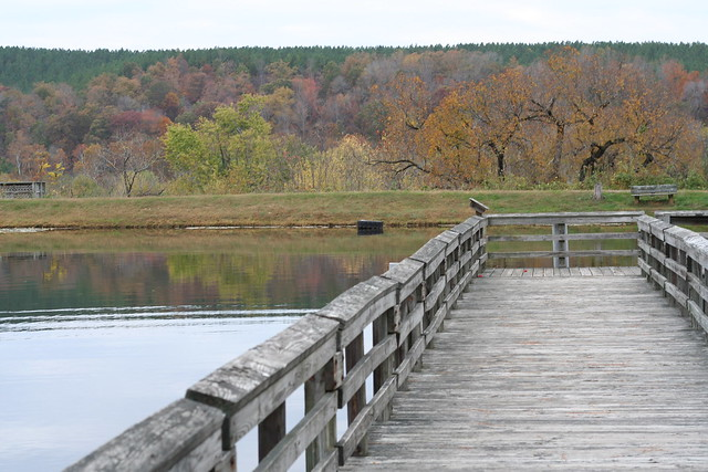 James River State Park Fall 2014 (133)