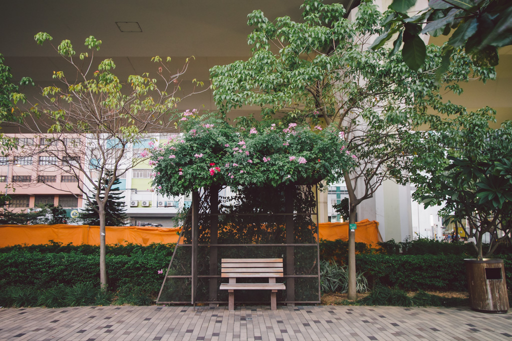 Untitled 觀塘海濱公園 本地單車美景 #004 觀塘海濱公園 15615957047 78ac8d88b1 o
