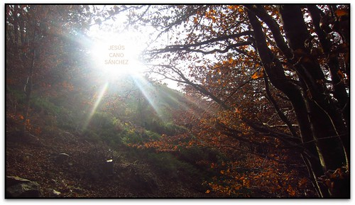 park parque españa sunrise canon spain alba catalonia catalunya parc cataluña valles montseny espanya vallesoriental albada elsenyordelsbertins barcelonaprovincia fogarsdemontclus ixus310hs