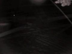 00606E91EAE6(countryman2) motion alarm at 20141219055300