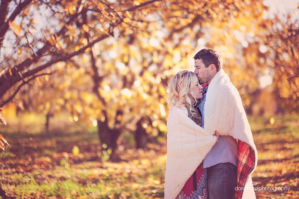 Grand Rapids Michigan couple, engagement, e-session photography