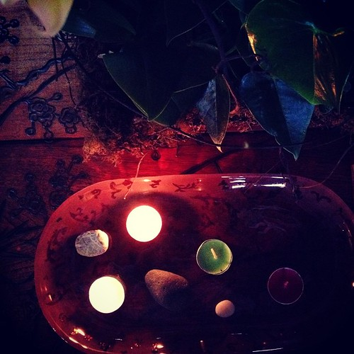 The second light of advent, it is the light of plants. Plants that reach up to the sun and in the breezes dance.