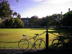 Trinity College New Square