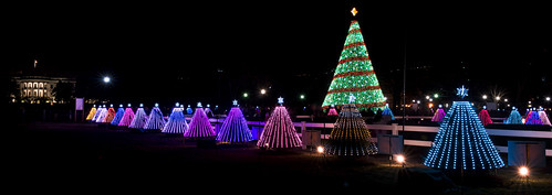 The National Christmas Tree in Washington, DC by Geoff Livingston